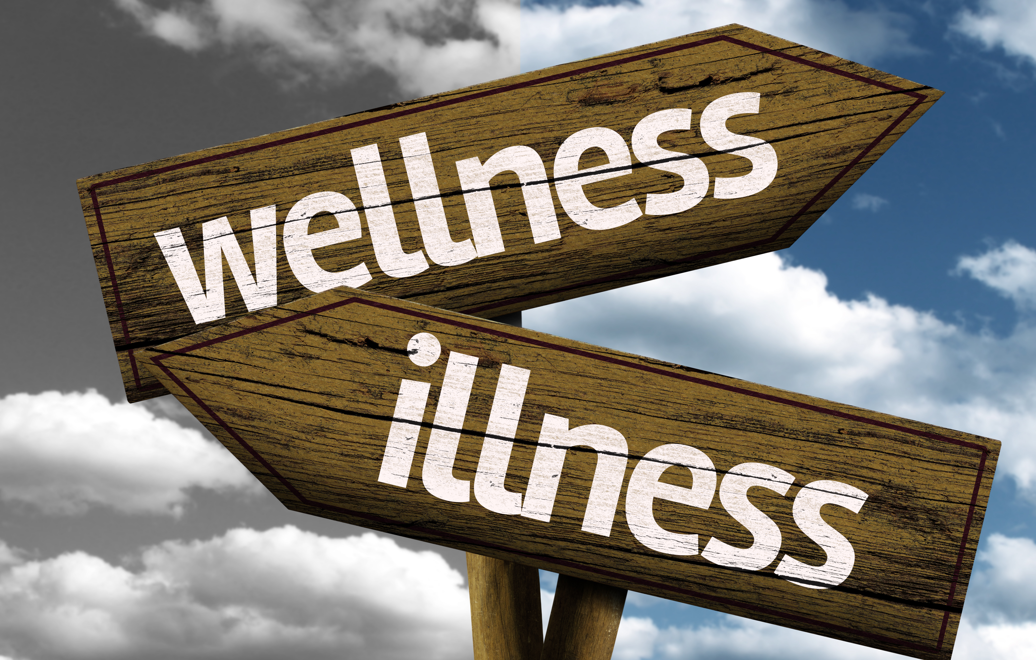 Preventive – wellness vs illness