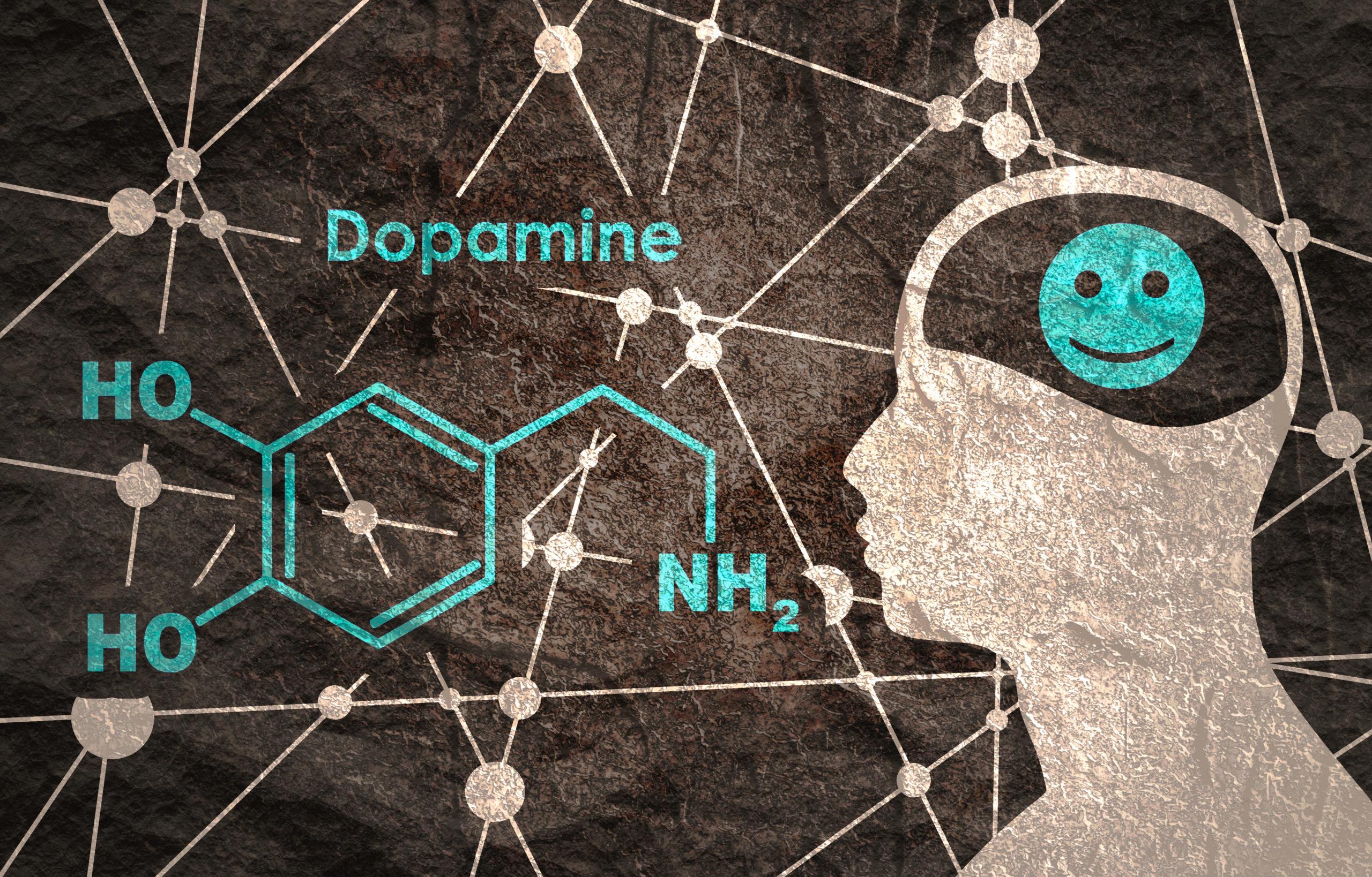 Chemical,Molecular,Formula,Hormone,Dopamine.,Silhouette,Of,A,Man,Head.
